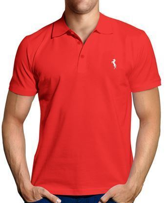 Picture of polo Tshirt